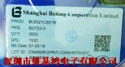 BL8021CB5�a品�D片