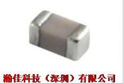 WSLP1206R0100FEA产品图片